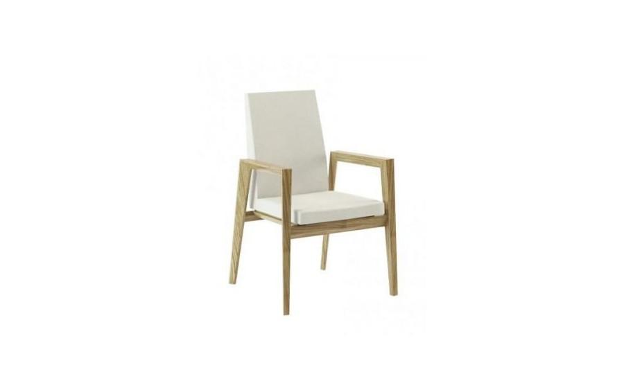 Modern krzesło z podłokietnikami