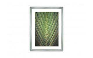 Obraz szklany 60x80 Liść palmy