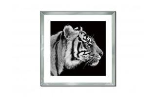Obraz szklany 60x60 Głowa tygrysa