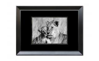 Obraz szklany 80x60 Lwica i lwiątko