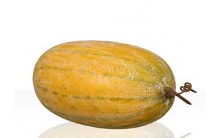 Sztuczny owoc - Melon