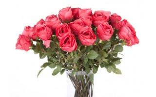 Róża czerwona 63cm
