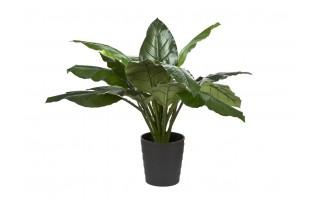 Roślina doniczkowa Spatka 110cm (sztuczna)