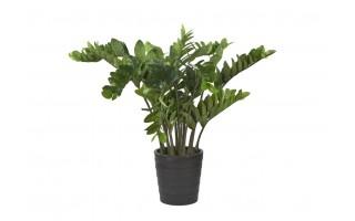Roślina Zamiokulkas Zamiolistny 110cm (sztuczna)