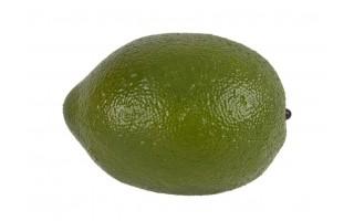 Sztuczny owoc - Limonka