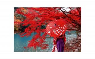 Obraz szklany 120x80 cm. Jesień (Japonia)